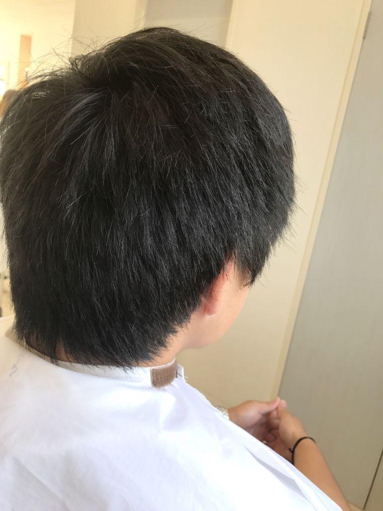 f:id:kenichi6282:20171008193337j:plain