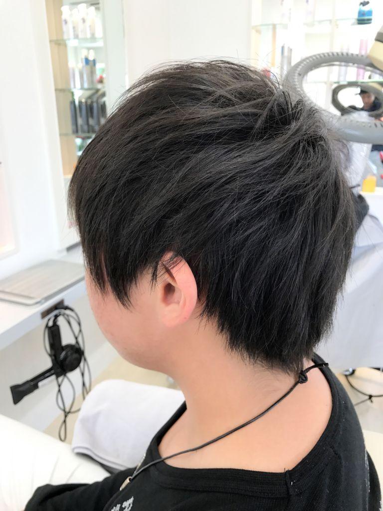f:id:kenichi6282:20171012211532j:plain