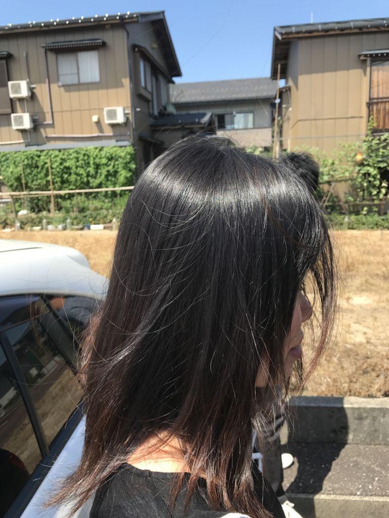 f:id:kenichi6282:20180305230029j:plain