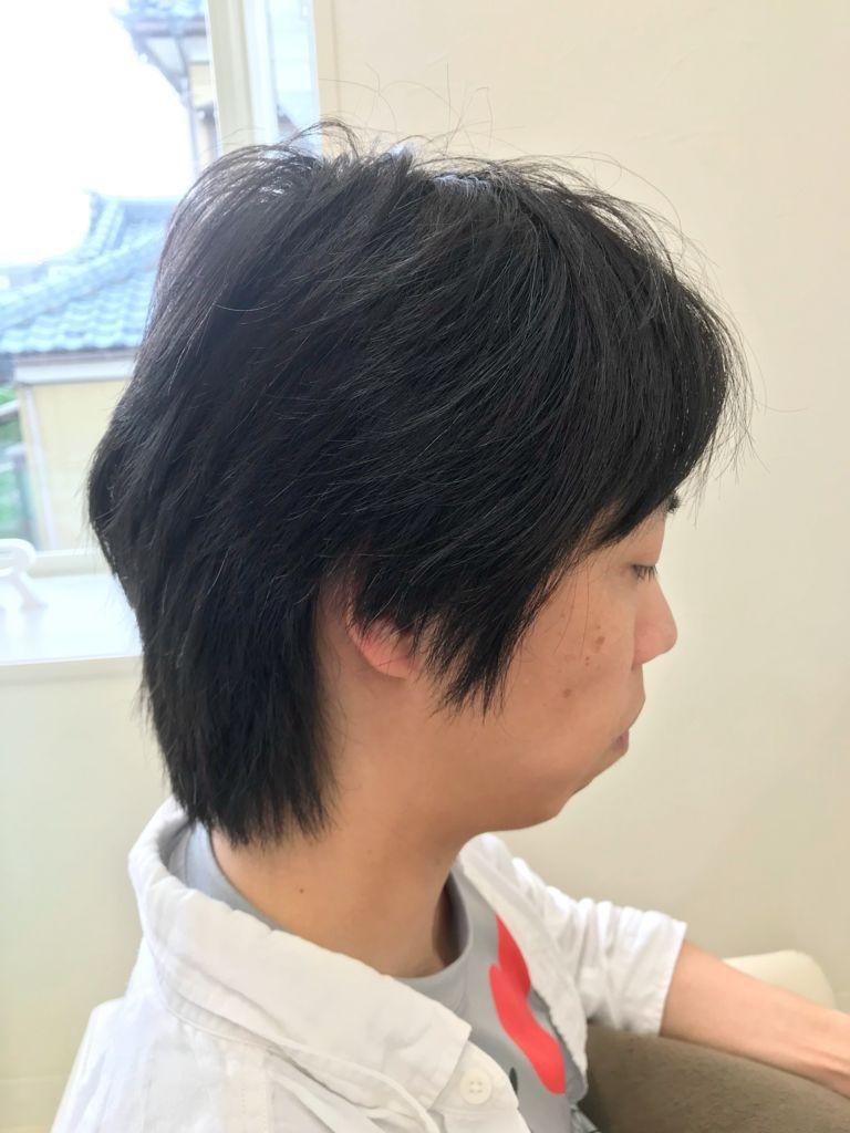 f:id:kenichi6282:20180612211455j:plain