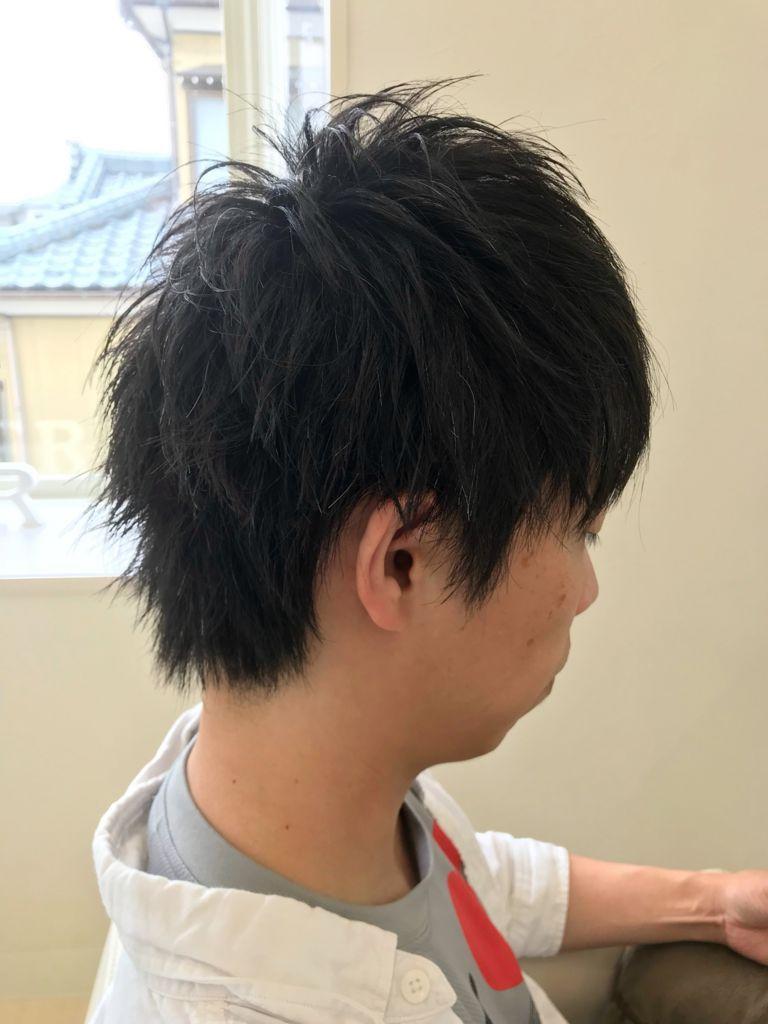 f:id:kenichi6282:20180612213259j:plain