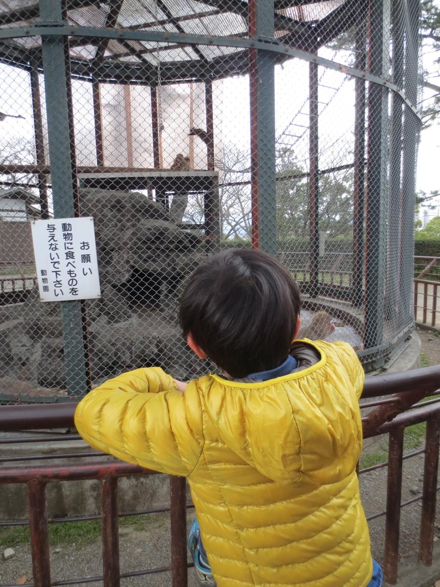 f:id:kenichirouk:20150329113248j:plain