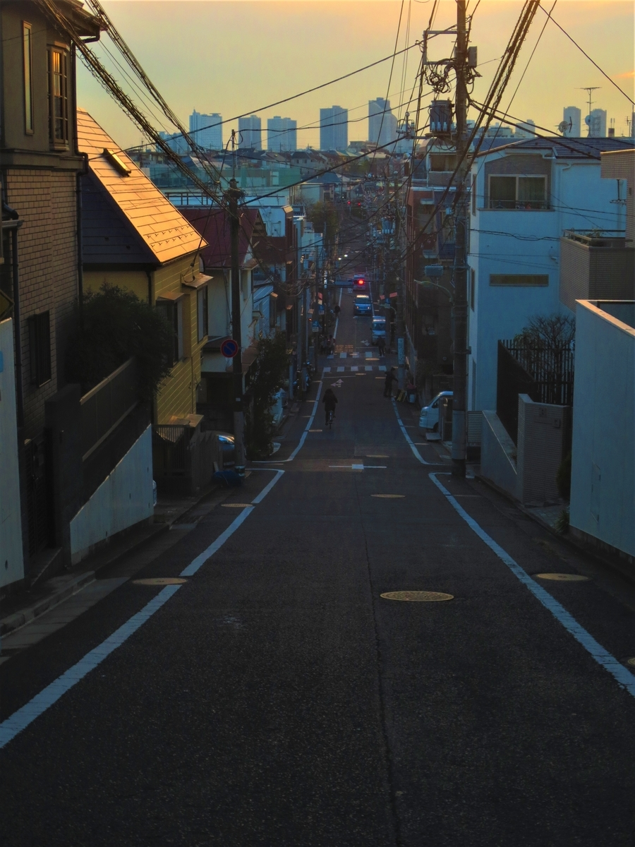 f:id:kenichirouk:20201201072638j:plain