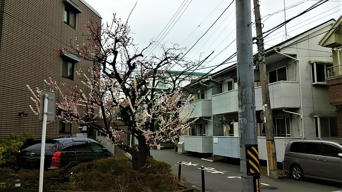 f:id:kenichirouk:20210303052501j:plain