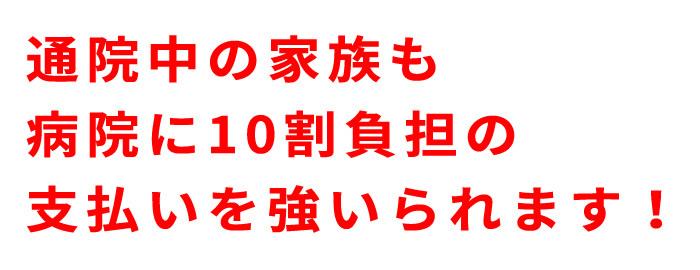 f:id:kenjakun:20190322181723j:plain