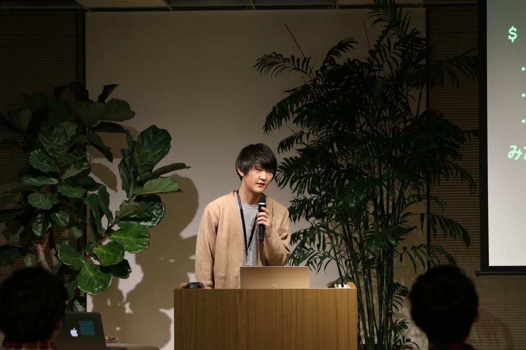 f:id:kenji-hanada:20190227184515j:plain