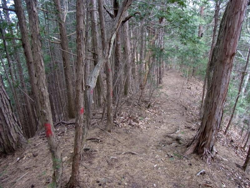 f:id:kenji-iwasaki:20120204110037j:image:w360