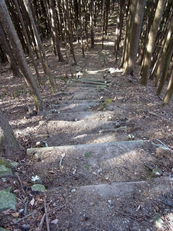 f:id:kenji-iwasaki:20120204121820j:image:w360