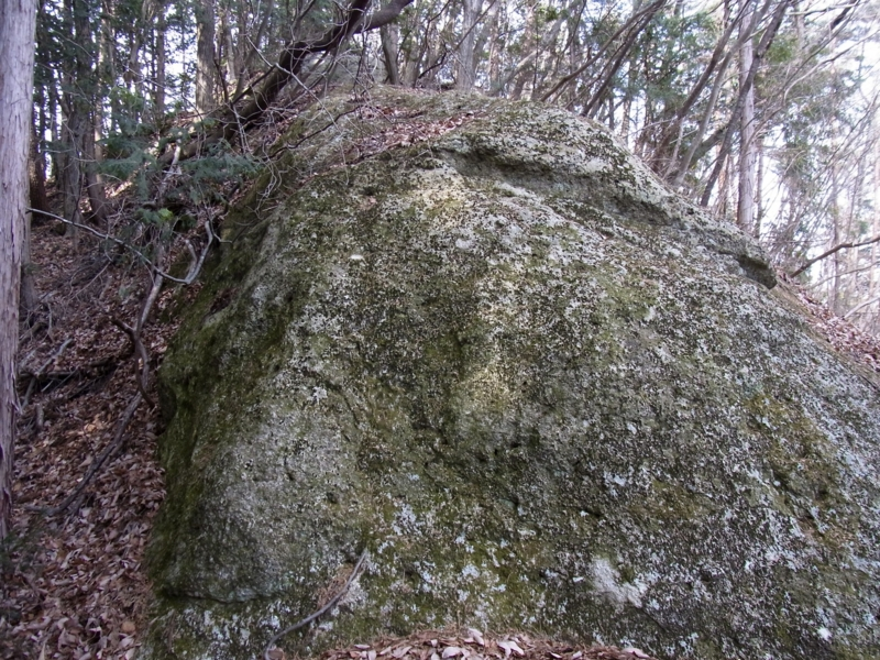 f:id:kenji-iwasaki:20120204122655j:image:w360