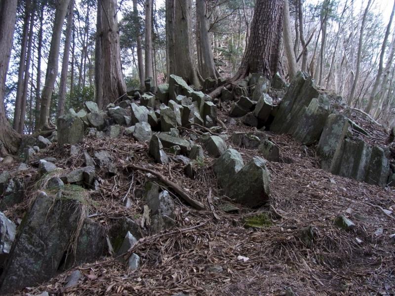 f:id:kenji-iwasaki:20120204122915j:image:w360