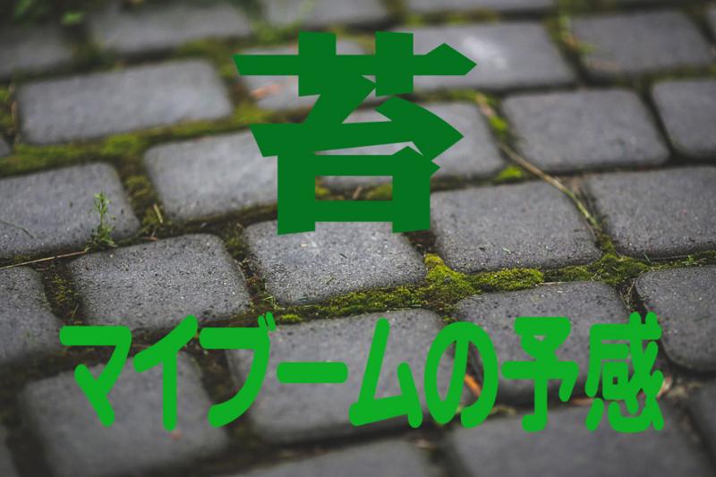 f:id:kenji_2387:20171010110941j:plain