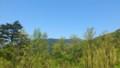 [twitter] 林道使って県境に。宮崎県椎葉村は八代市と隣接してるんですよ!(・