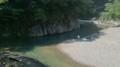 [twitter] 滝から流れる小川で涼を堪能してください\(^o^)/