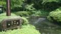 [twitter] ふらっと阿蘇の白川水源に