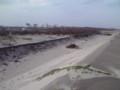 荒浜地区の被害状況を視察(その5)