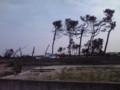 荒浜地区の被害状況を視察(その8)