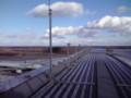 屋上の展望台は有料(¥100)です。www