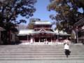 小春日和の富岡八幡宮。つ~か、春です。www