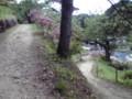 金蛇水神社(裏)