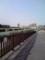 旧中川(平井付近)