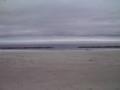 仙台市若林区荒浜地区
