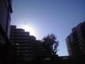 晩夏の昼下がり in 江東区。。。