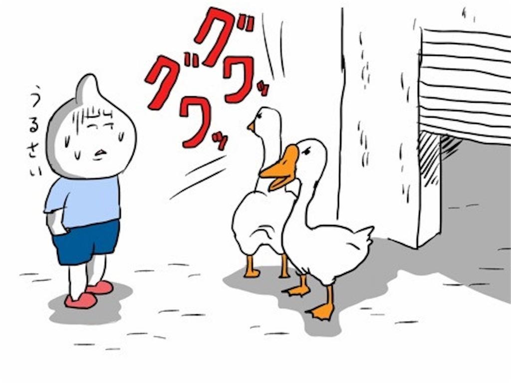 f:id:kenko-daisuki:20190614220646j:image