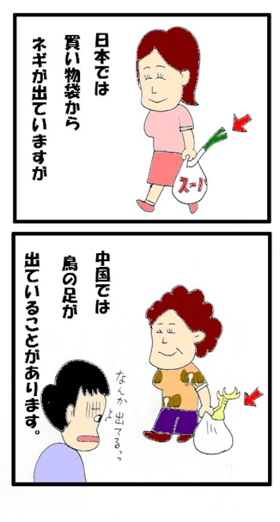 f:id:kenko-daisuki:20190617214225j:image