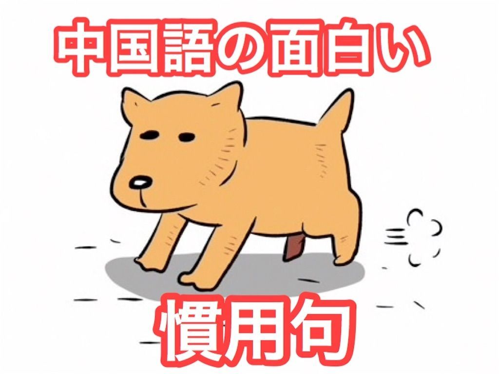f:id:kenko-daisuki:20190916191339j:image