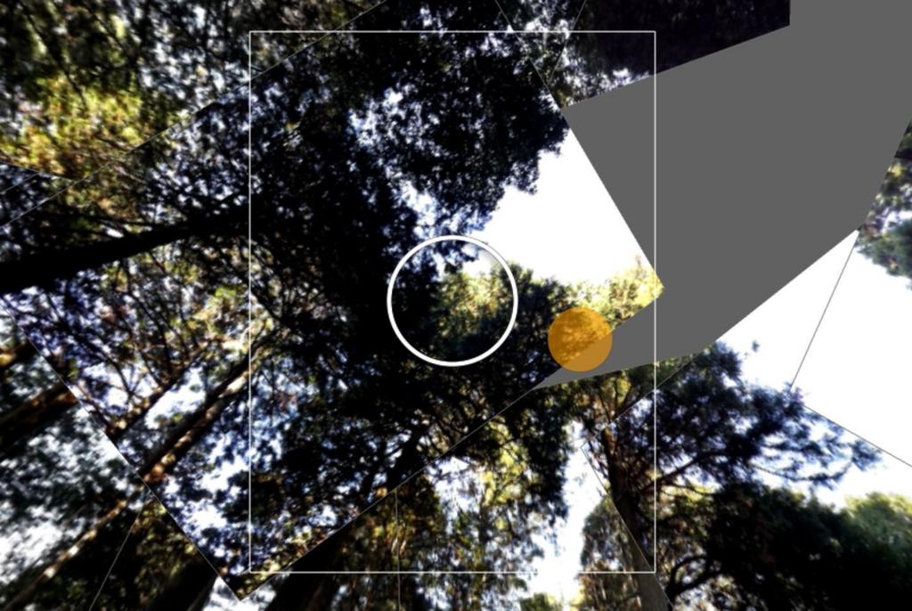 f:id:kenko-san:20161208224649j:plain