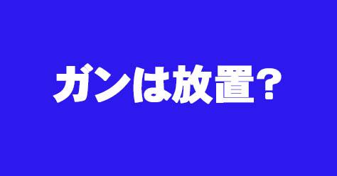 f:id:kenkohuntermio:20170126200400j:plain