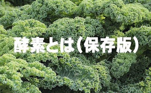f:id:kenkohuntermio:20170203060734j:plain