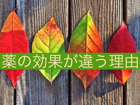 f:id:kenkohuntermio:20170402175357j:plain