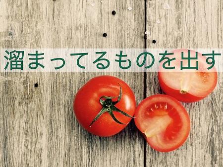 f:id:kenkohuntermio:20170404172555j:plain