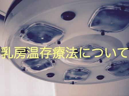 f:id:kenkohuntermio:20170418165734j:plain