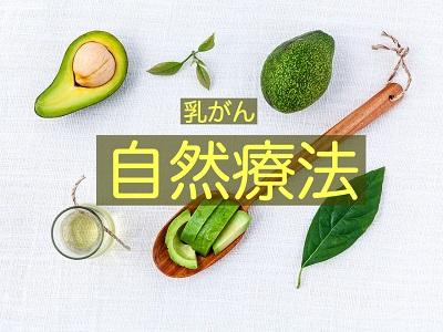 f:id:kenkohuntermio:20170518164518j:plain