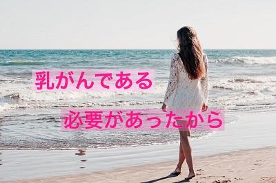 f:id:kenkohuntermio:20170925155922j:plain