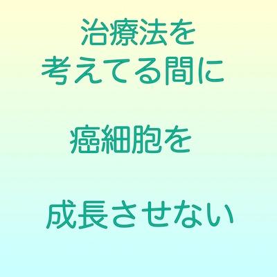 f:id:kenkohuntermio:20171202154849j:plain