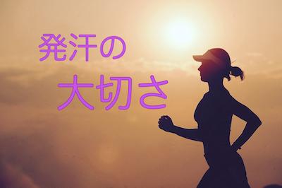 f:id:kenkohuntermio:20180328113239j:plain