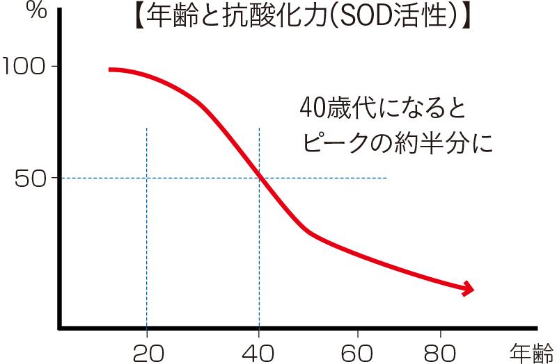 f:id:kenkomaster-s:20200205213755j:plain