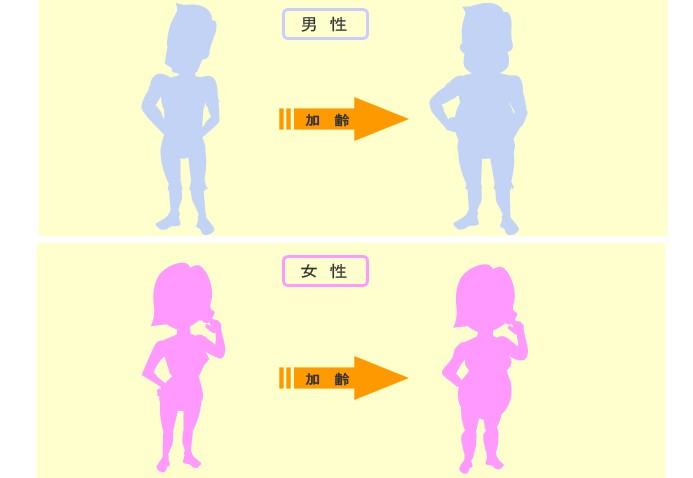 f:id:kenkomaster-s:20200213233720j:plain