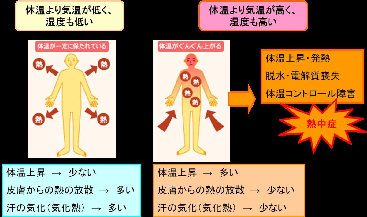 f:id:kenkou-anzen:20190626120053p:plain