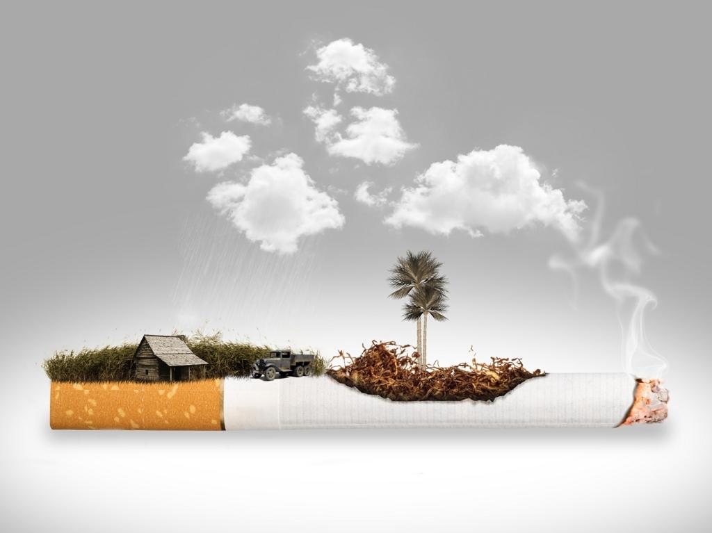 タバコが燃えている