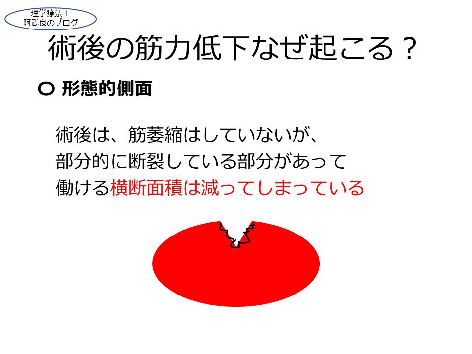 f:id:kenkouPT:20201231042301p:plain