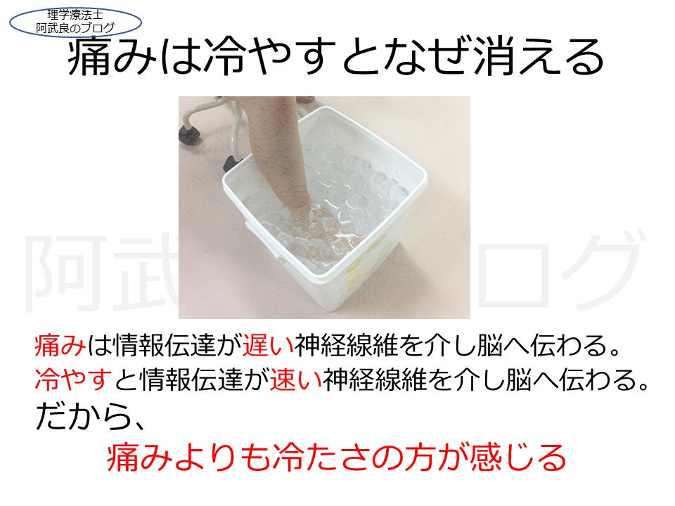 f:id:kenkouPT:20210303013450p:plain