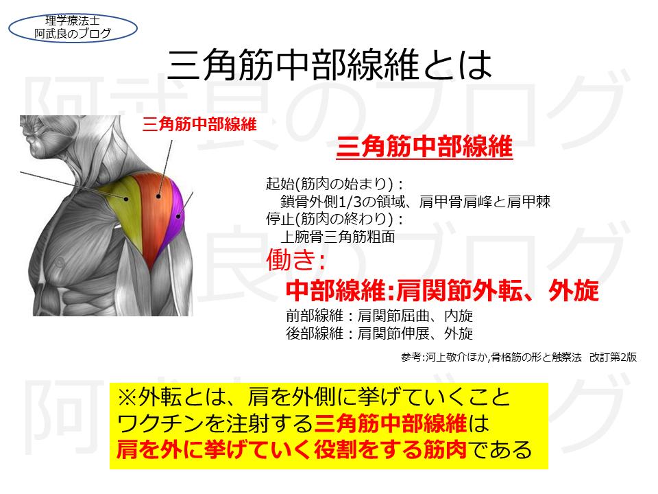 f:id:kenkouPT:20210505052015p:plain