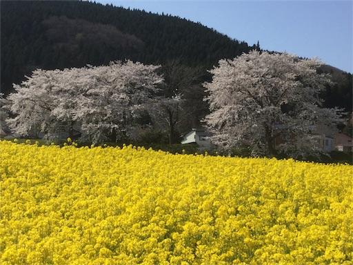 f:id:kenkou_1199:20170425181636j:image