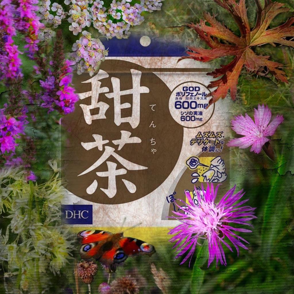 f:id:kenkouyan:20201205122228j:image