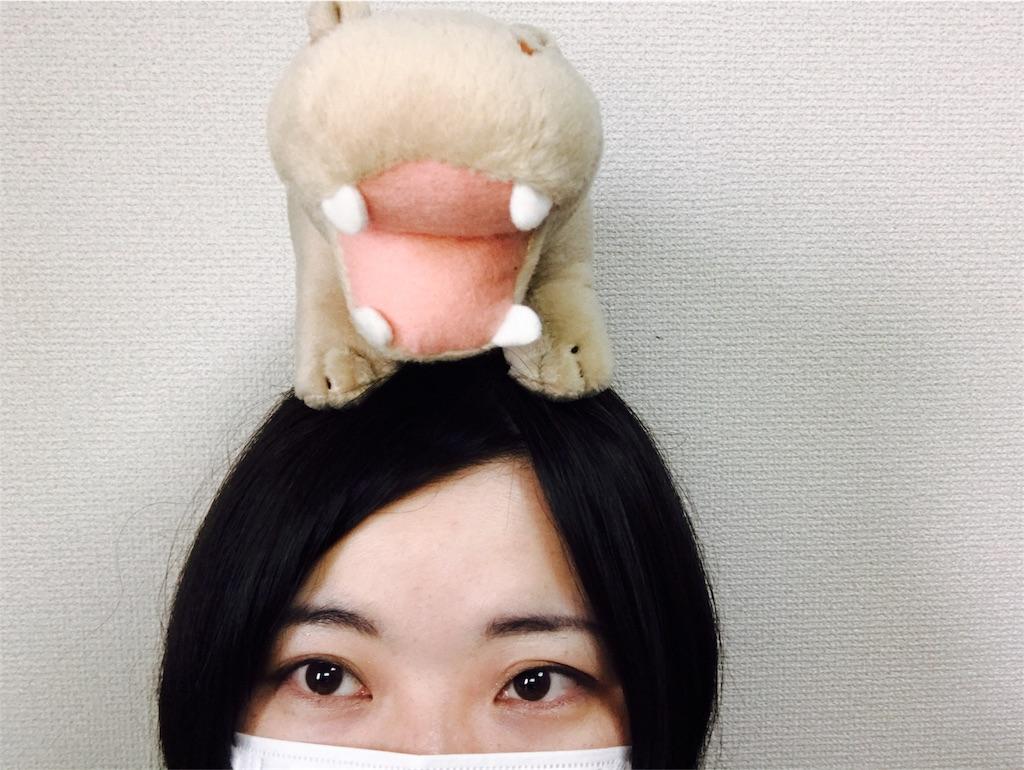 f:id:kennedyamamoto:20170331135214j:image