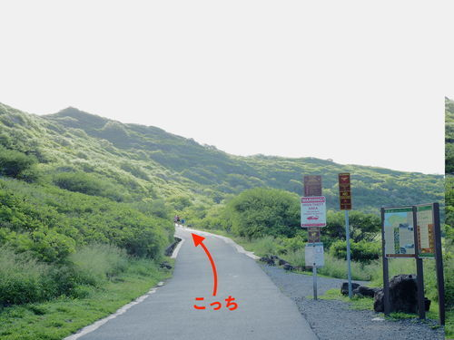 f:id:kennobuyoshi:20191111121259j:plain